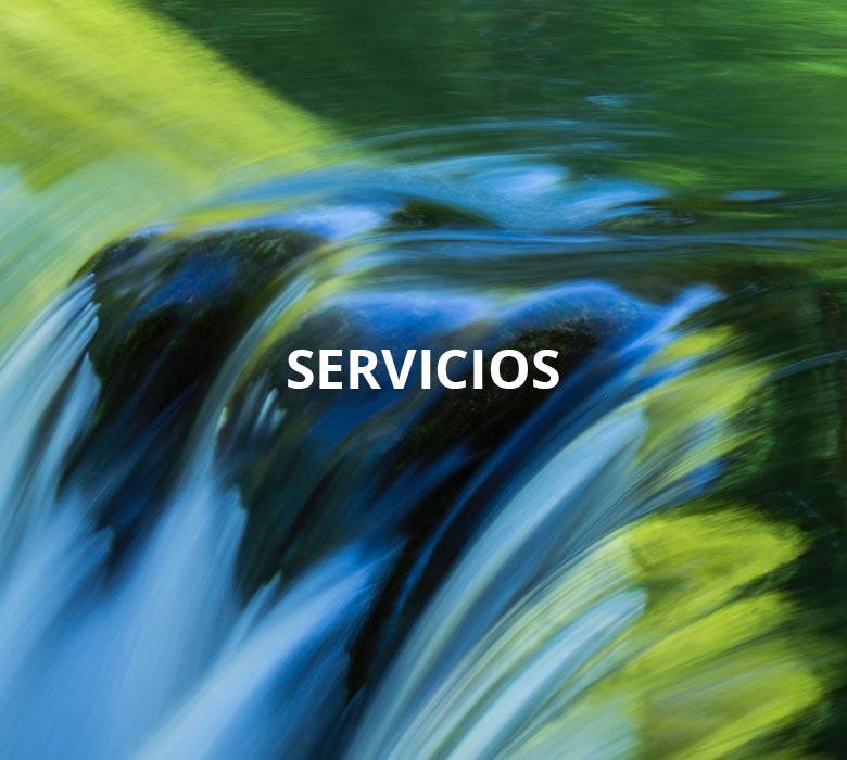 Calugas-servicios