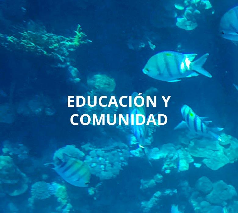 Calugas_educacion_comunidad